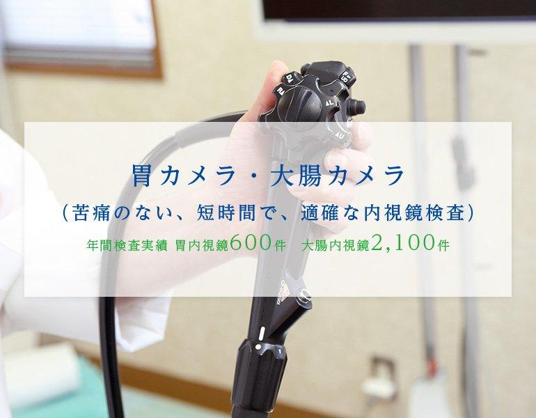 胃カメラ・大腸カメラ(苦痛のない、短時間で、適確な内視鏡検査)